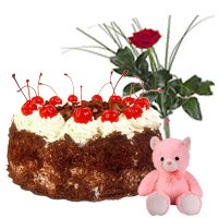 Enticing Black Forest Cake, Teddy and Red Rose