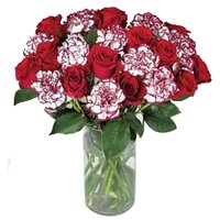 Buy Special Roses N Carnations Bunch