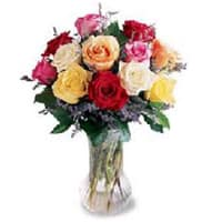 Fashionable Soft Touch Dozen of Mixed Roses in a Vase