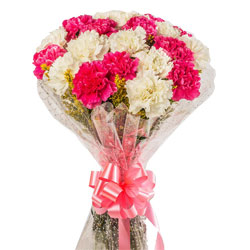 Special Bouquet of White N Pink Carnations