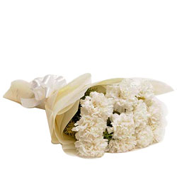 Glorious White Carnations Bunch