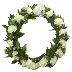 Elegant Wreath of Carnations