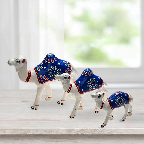 Impressive 3pc Camel Showpiece Set