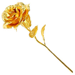 Wonderful Golden Rose Stick