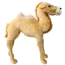 Attractive Standing Camel Soft Toy
