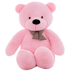 Special Teddy for your Loved ones