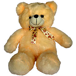 Exclusive Teddy Bear for Kids