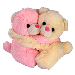 Delightful Pair of Teddies with Essence of Romance